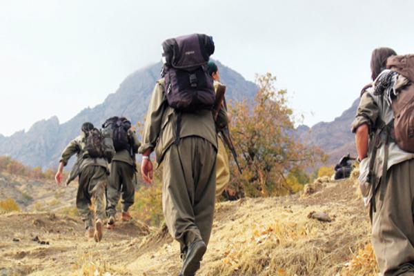 Diyarbakır'da 2 PKK'lı güvenlik güçlerine teslim oldu