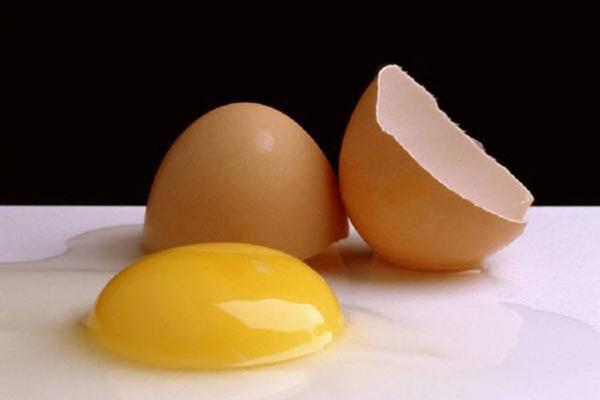 Yumurta bir çok hastalığın ilacı