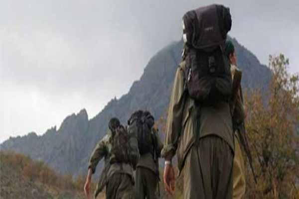 Muş'ta PKK kaçırdığı askerleri güvenlik güçlerine teslim etti