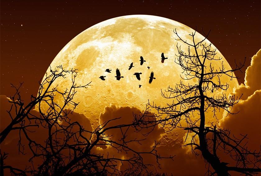 Süper Ay'ı görmeye saatler kaldı