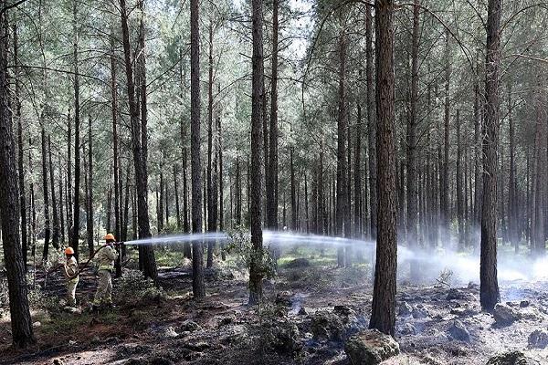 Ukrayna'da çıkan yangında 17 kişi hayatını kaybetti