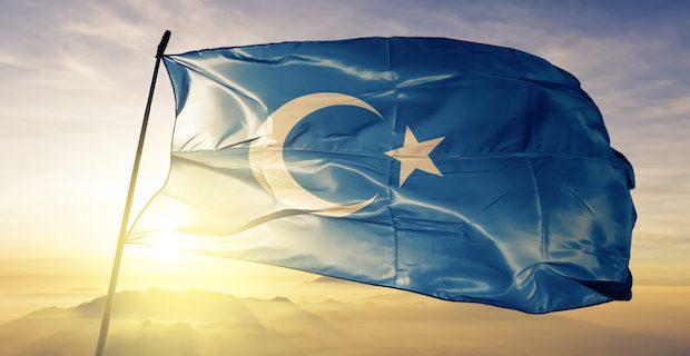 Kardeş Özbekistan'dan doğu Türkistan'a destek