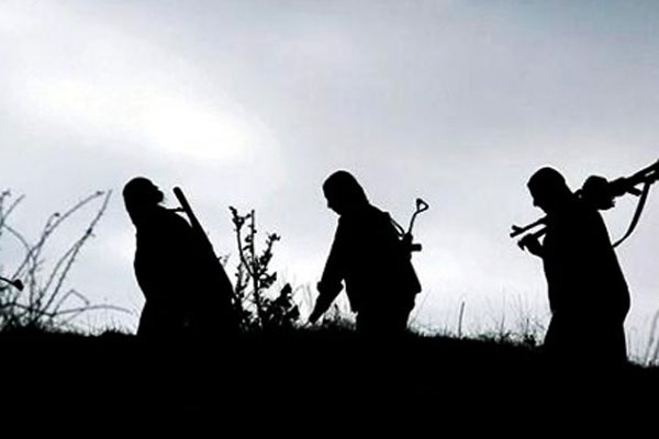 Bingöl'deki çatışmalarda 2 terörist etkisiz hale getirildi