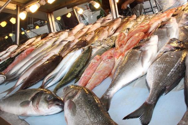 Av yasağı bitince balık fiyatları düştü