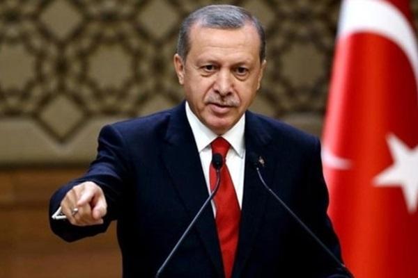 Ayhan Oğan'ın tepki çeken açıklamalarına Cumhurbaşkanından yanıt