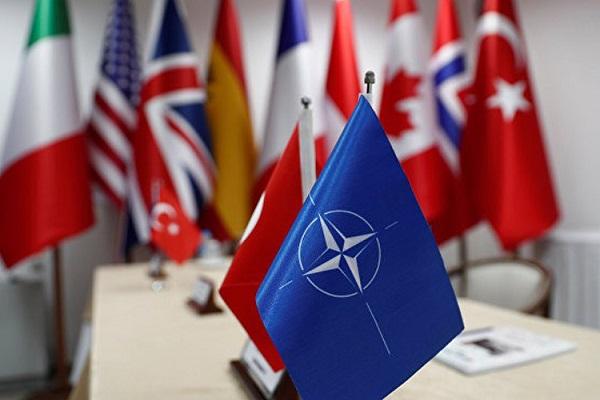 NATO Genel Sekreteri Türkiye'den ne için özür diledi