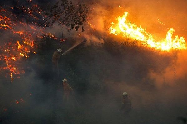 Portekiz'deki büyük yangında 62 kişi can verdi