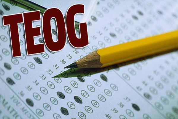 TEOG sınav sonuçları açıklandı, tıkla öğren