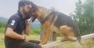 Depremde hayat kurtaran köpeği zehirlediler